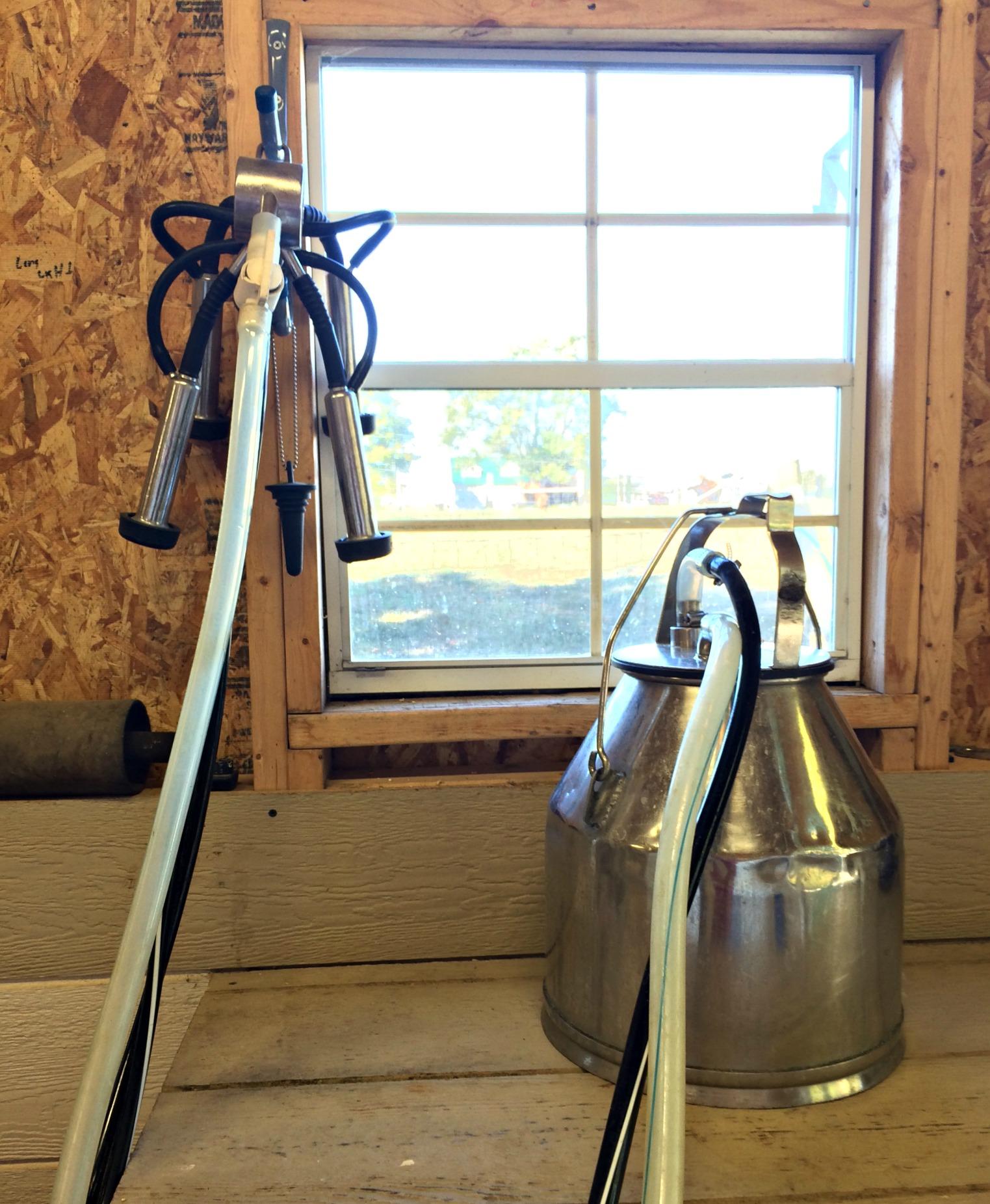 milk barn 21