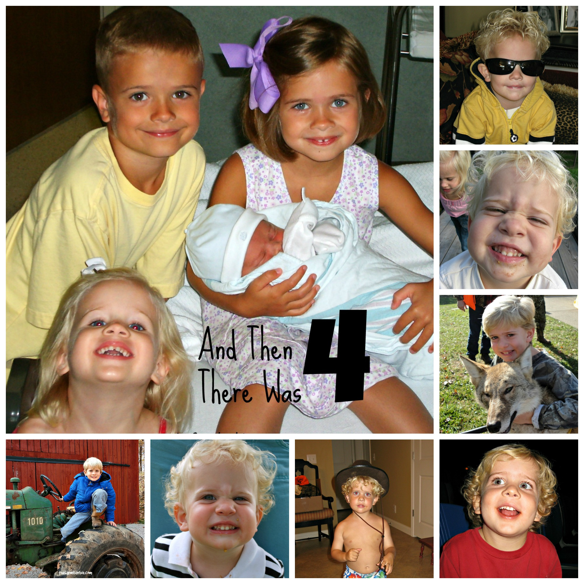cole collage