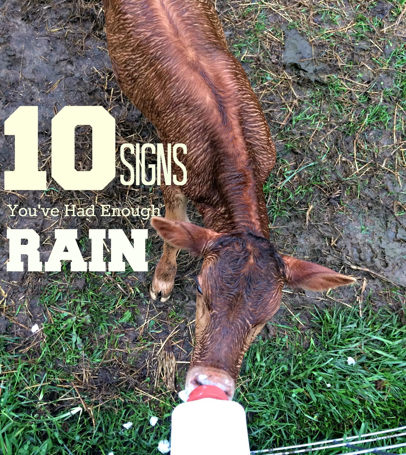 10 Signs You've Had Enough Rain