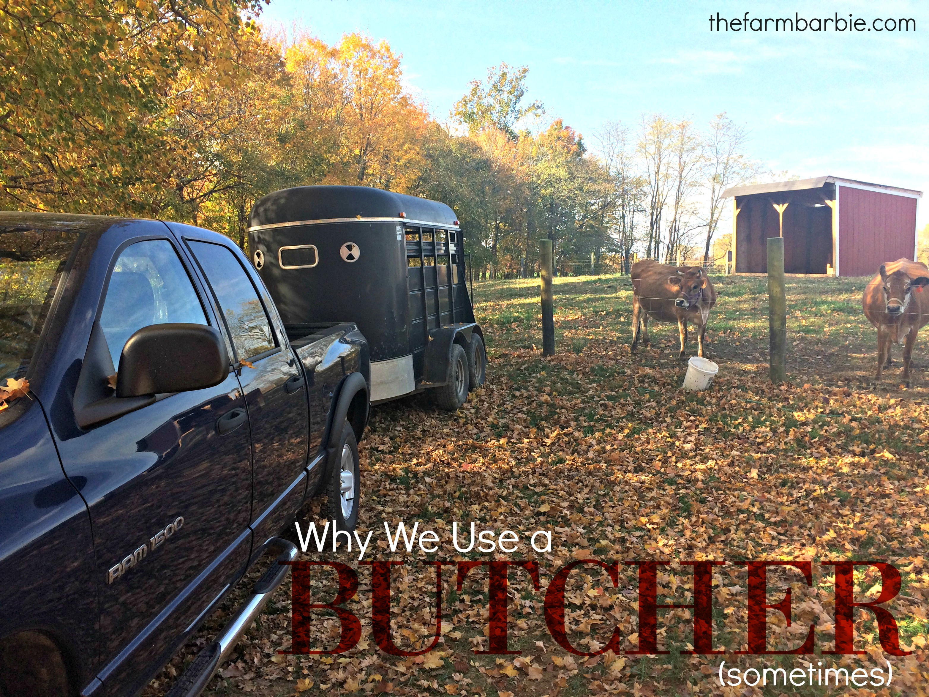 Why We use a Butcher (sometimes)