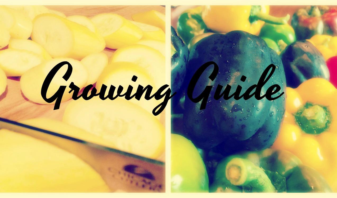 Growing Guide (Premium)