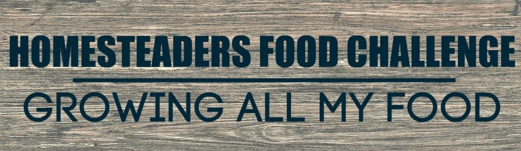 Homesteaders Food Challenge